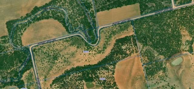 0 County Road 432, Merkel, TX 79536 (#14607514) :: Homes By Lainie Real Estate Group