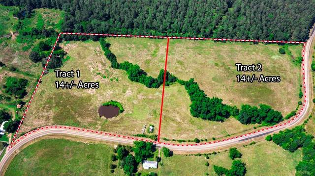 TBD Fm 1975, Tract 2, Gilmer, TX 75644 (MLS #14607526) :: The Russell-Rose Team