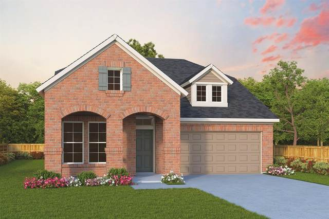 149 Camelia Street, Garland, TX 75043 (MLS #14607876) :: All Cities USA Realty