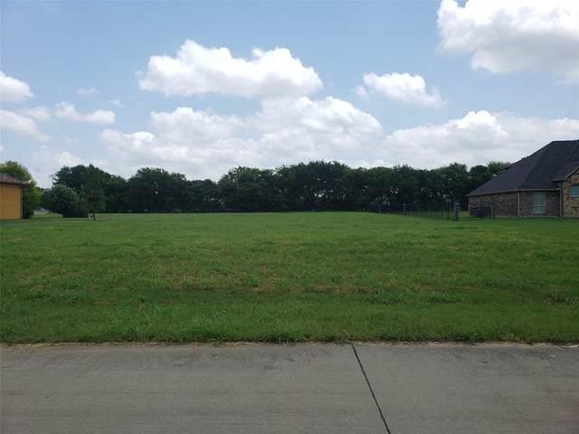 1706 Right Field Court #2224, Cedar Hill, TX 75104 (MLS #14608319) :: The Daniel Team
