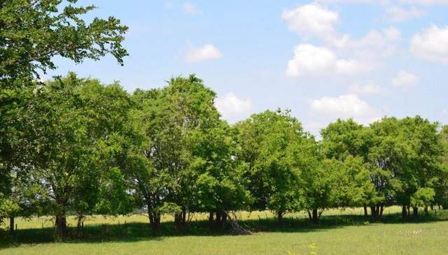 County Rd 3725, Bailey, TX 75413 (MLS #14610100) :: Real Estate By Design