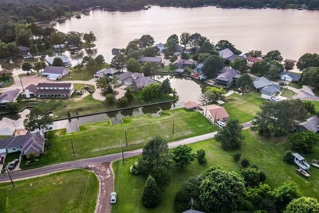113 Hilltop Drive, Trinidad, TX 75163 (MLS #14611068) :: Real Estate By Design