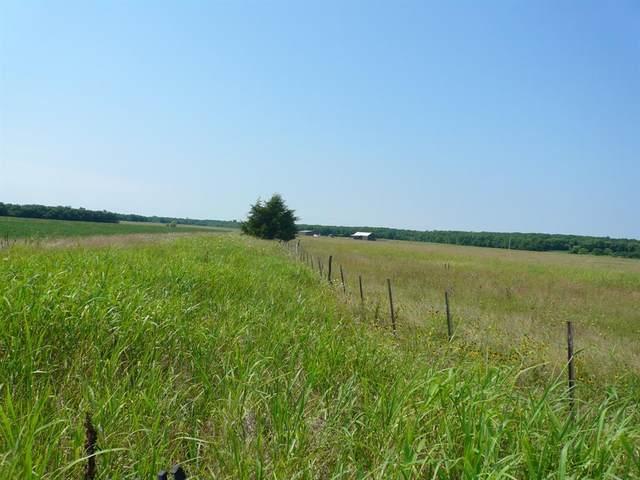 2645 County Road 3210, No City, TX 75432 (MLS #14611456) :: Wood Real Estate Group