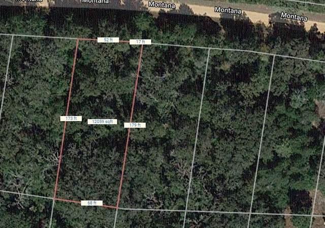 Lot 6 Montana Drive, Hilltop Lakes, TX 77871 (MLS #14611609) :: Robbins Real Estate Group