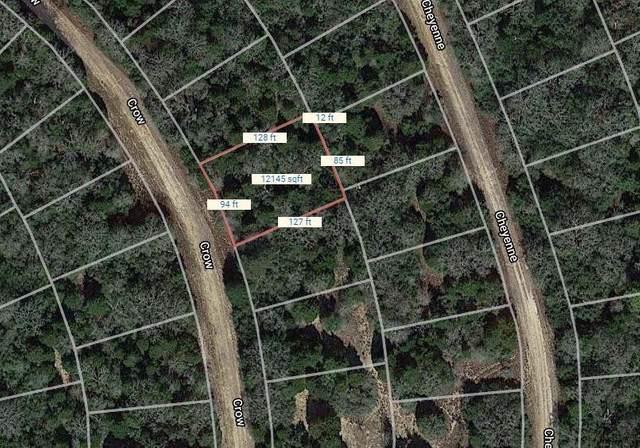 Lot 30 Crow, Hilltop Lakes, TX 77871 (MLS #14611986) :: Robbins Real Estate Group