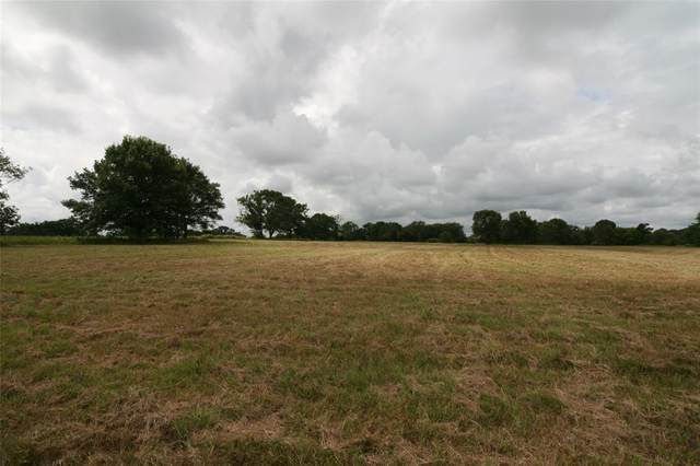 TBD Vz County Road 1803, Grand Saline, TX 75140 (MLS #14612189) :: Real Estate By Design