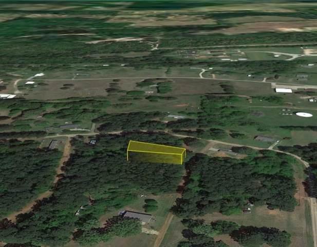 303 Sand Jack Drive, Bullard, TX 75757 (MLS #14612534) :: Real Estate By Design