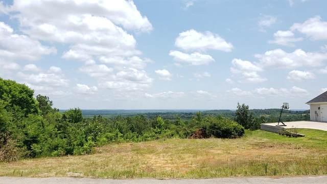 11082 Skyline Drive, Brownsboro, TX 75756 (MLS #14613127) :: Robbins Real Estate Group