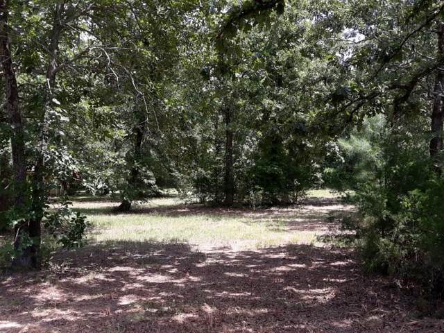 000 Vz County Road 1225, Grand Saline, TX 75140 (MLS #14613663) :: Real Estate By Design