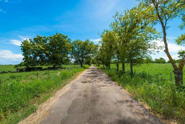 Tract 3 Co Road 153, Kaufman, TX 75142 (MLS #14614114) :: Real Estate By Design