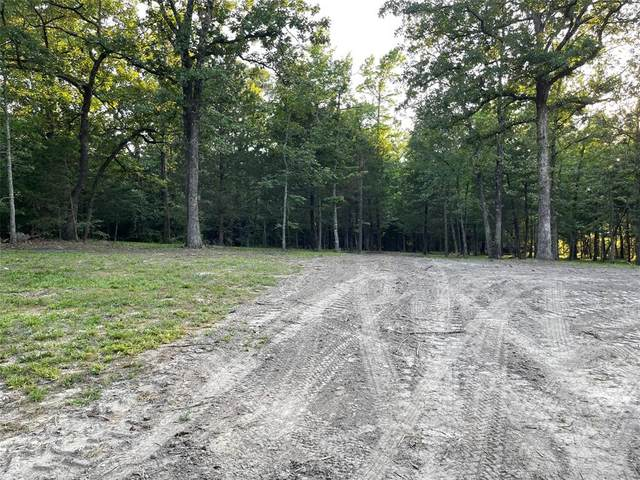 282 Rs County Road 4263, Emory, TX 75440 (MLS #14614254) :: The Property Guys