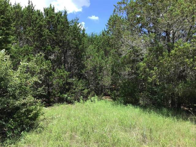 30041 Greenhill Dr & Stonedale Drive, Whitney, TX 76692 (MLS #14614564) :: Real Estate By Design