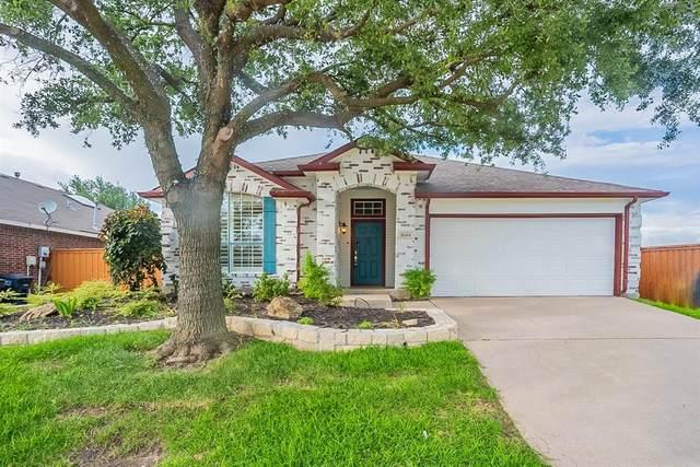8204 Muirwood Trail, Fort Worth, TX 76137 (MLS #14615847) :: Wood Real Estate Group