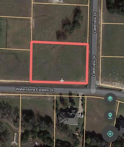 D11 Lakeview Drive, Mckinney, TX 75071 (MLS #14617049) :: The Mauelshagen Group