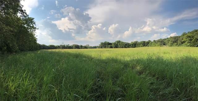 - County Rd 328, Rosston, TX 76263 (MLS #14617519) :: Trinity Premier Properties