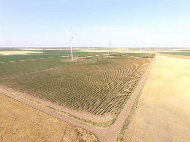 50 AC Cr 274, No City, TX 79521 (MLS #14618026) :: Real Estate By Design