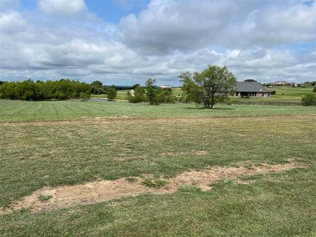 144 Condor View, Weatherford, TX 76087 (MLS #14618204) :: Real Estate By Design