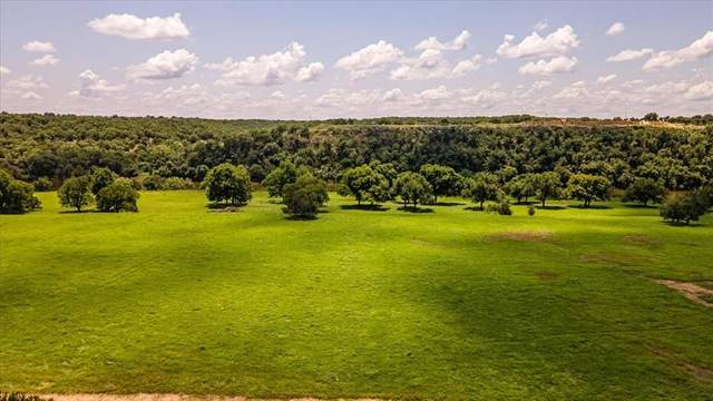 Lot 124 Brazos Mountain Ranch, Mineral Wells, TX 76067 (MLS #14618946) :: Robbins Real Estate Group