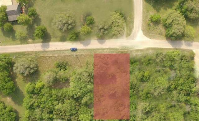12177 Rolling Oaks Drive, Whitney, TX 76692 (MLS #14619013) :: Real Estate By Design