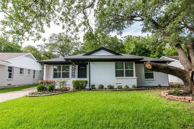 3203 San Lucas Avenue, Dallas, TX 75228 (MLS #14619255) :: Wood Real Estate Group