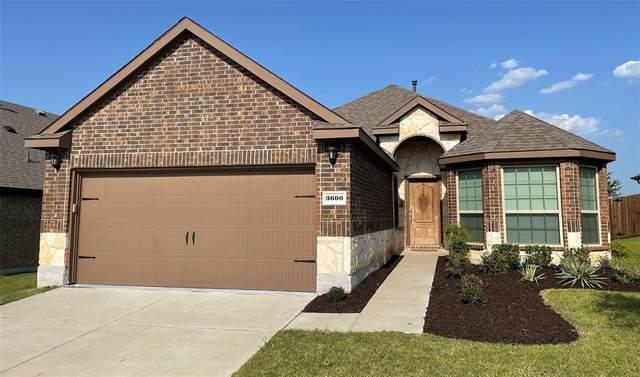 3600 Rio Grande Road, Little Elm, TX 75068 (MLS #14619266) :: Potts Realty Group