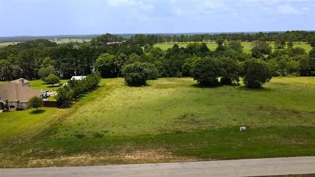 Lot 156 Lago Vista Drive, Athens, TX 75752 (MLS #14619860) :: Trinity Premier Properties