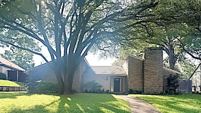 2008 Hondo Drive, Plano, TX 75074 (MLS #14620281) :: The Mauelshagen Group