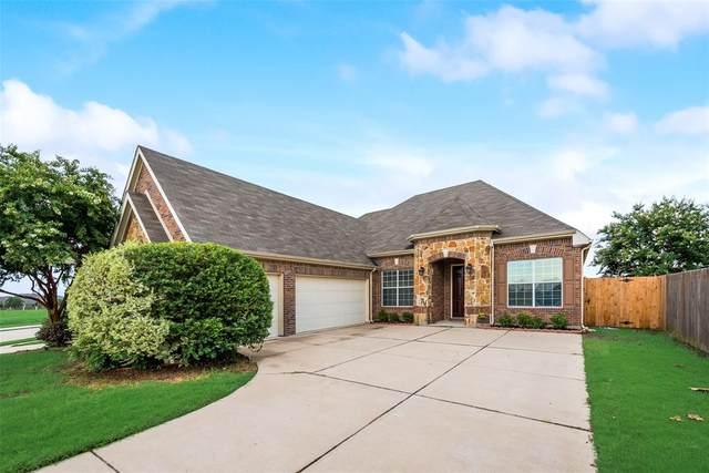 5308 Bee Drive, Grand Prairie, TX 75052 (MLS #14620424) :: The Daniel Team