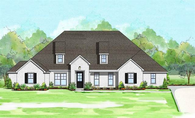205 Swift Drive, Aledo, TX 76008 (MLS #14621454) :: Real Estate By Design