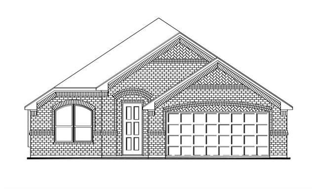 2418 Trickling Creek Drive, Garland, TX 75041 (MLS #14622147) :: The Property Guys