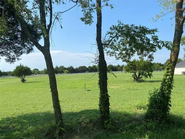 686 E Little Creek Road, Cedar Hill, TX 75104 (MLS #14622778) :: The Daniel Team