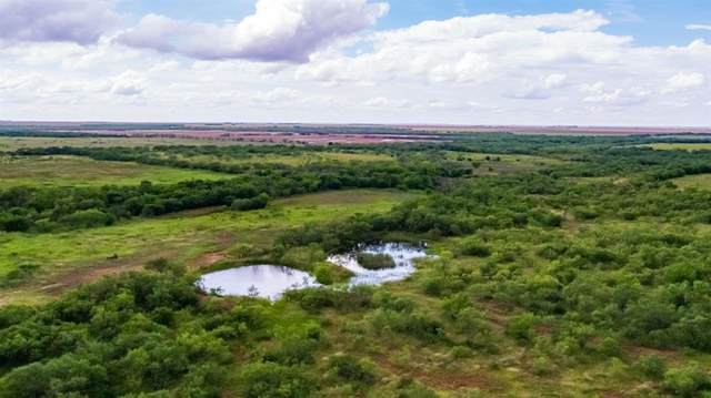 5476 County Road 256, Stamford, TX 79553 (MLS #14622834) :: The Chad Smith Team