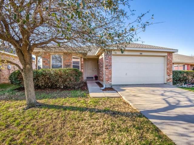 1408 Thornhill Lane, Little Elm, TX 75068 (MLS #14623963) :: The Daniel Team