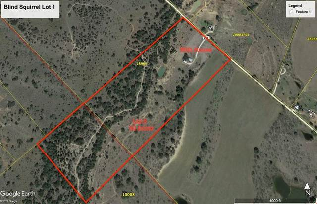 9450 County Road 202, Brownwood, TX 76801 (MLS #14624362) :: Real Estate By Design
