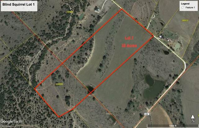 Lot 7 County Road 202, Brownwood, TX 76801 (MLS #14624372) :: Real Estate By Design