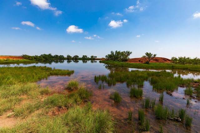 TBD County Road 241, No City, TX 79520 (MLS #14624383) :: Real Estate By Design