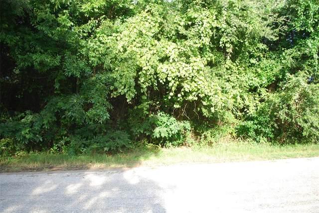 39229 Cedar Park Drive, Whitney, TX 76692 (MLS #14624559) :: Real Estate By Design