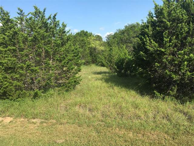 43198 Fringewood Drive, Whitney, TX 76692 (MLS #14624574) :: Real Estate By Design