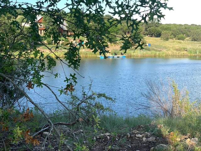 1665 Overlook Ridge, Bluff Dale, TX 76433 (MLS #14624856) :: All Cities USA Realty