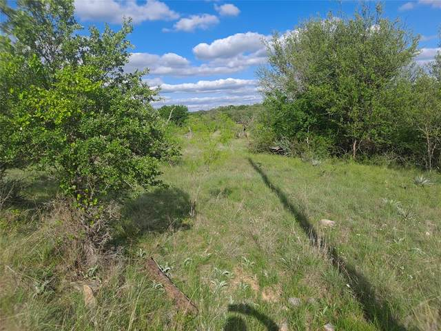 549 Oak Point Drive, May, TX 76857 (MLS #14625274) :: All Cities USA Realty
