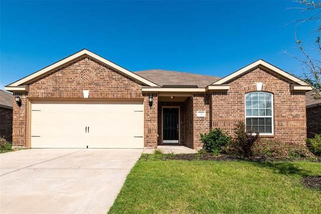231 Magnolia Drive, Princeton, TX 75407 (MLS #14625654) :: Rafter H Realty