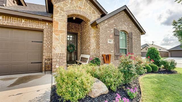 251 Valley View Drive, Waxahachie, TX 75167 (MLS #14626292) :: The Daniel Team