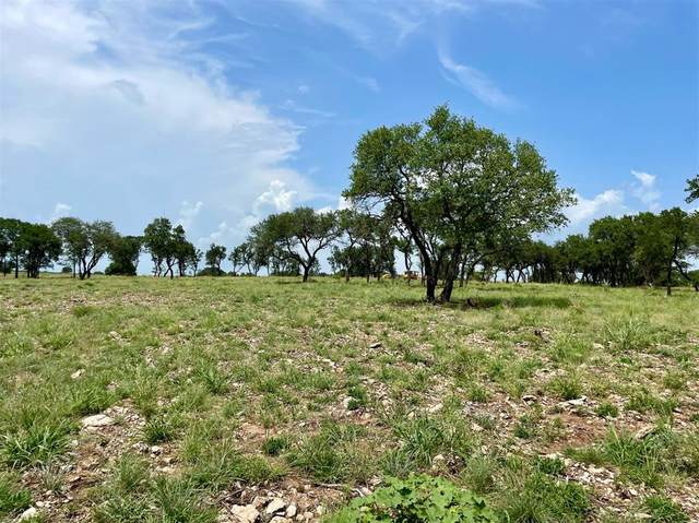 Lot 85 Greene Road, Weatherford, TX 76087 (MLS #14626366) :: Robbins Real Estate Group