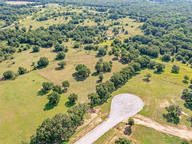 329 Arborview Drive, Weatherford, TX 76088 (MLS #14626398) :: The Kimberly Davis Group