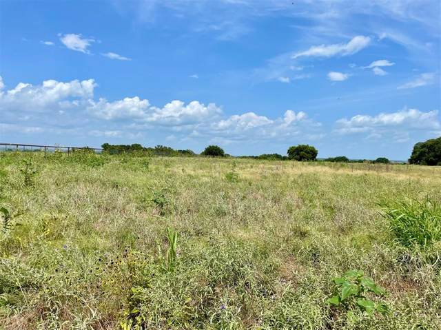 Lot 91 Cartwright Road, Weatherford, TX 76087 (MLS #14626464) :: Robbins Real Estate Group