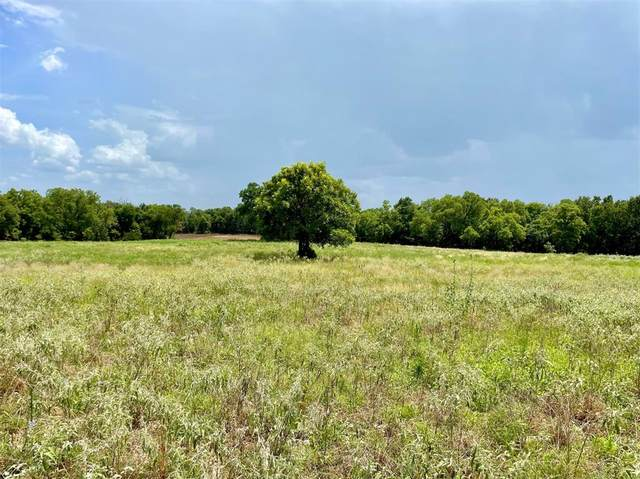 Lot 8 Pernell Court, Weatherford, TX 76087 (MLS #14626521) :: EXIT Realty Elite