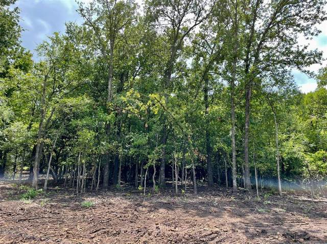 Lot 11 Pernell Court, Weatherford, TX 76087 (MLS #14626546) :: EXIT Realty Elite