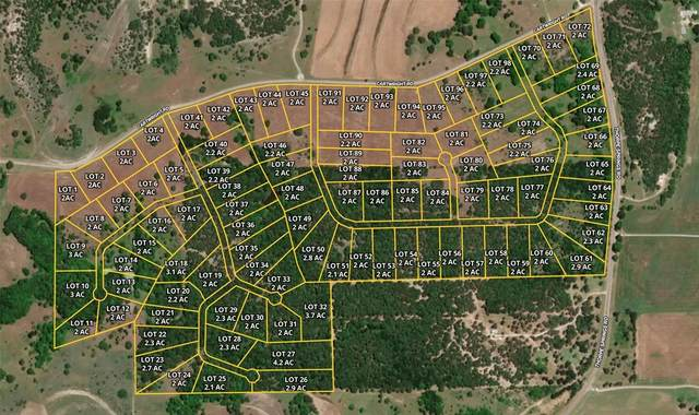 Lot 20 Roy Coffee Court, Weatherford, TX 76087 (MLS #14626574) :: Robbins Real Estate Group