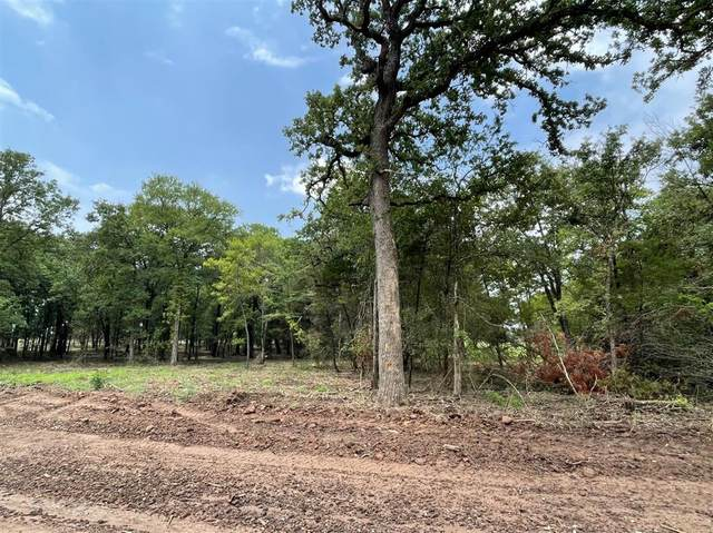 Lot 21 Roy Coffee Court, Weatherford, TX 76087 (MLS #14626597) :: EXIT Realty Elite