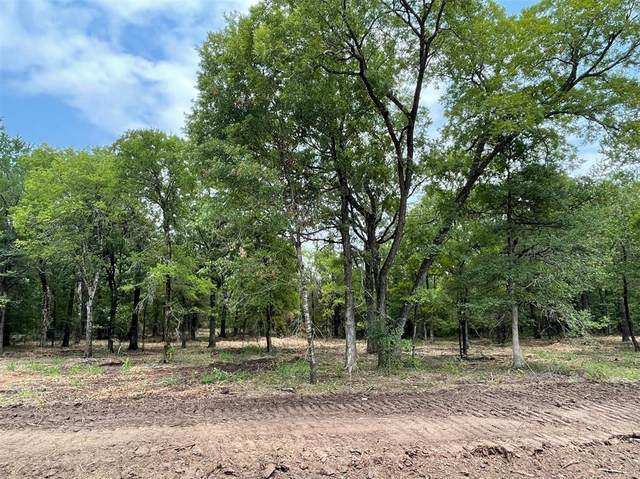 Lot 28 Roy Coffee Court, Weatherford, TX 76087 (MLS #14626627) :: Robbins Real Estate Group